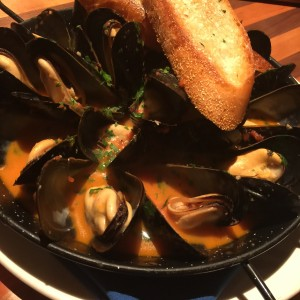 bar-harbor-mussels-image