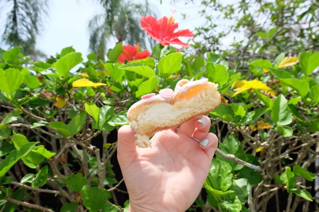 raspberry-cheesecake-donut-square-image